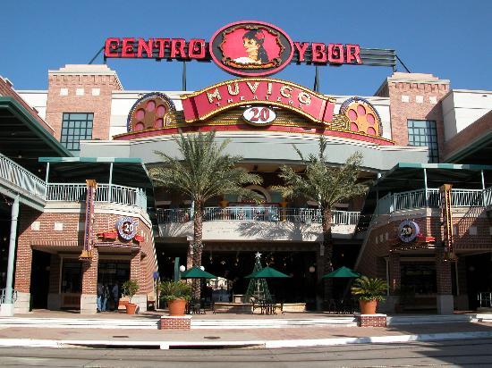Best Greek Restaurants Tampa