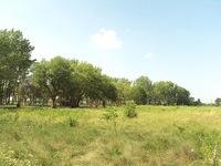 300px River Raisin National Battlefield Park2