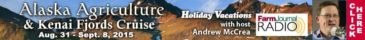 FJ Alaska Banner Ad